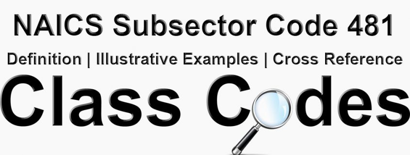 NAICS 3 Digit Subsector Code 481
