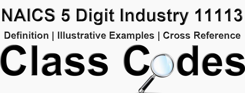 NAICS 5 Digit Industry 11113