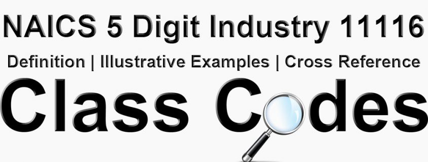 NAICS 5 Digit Industry 11116