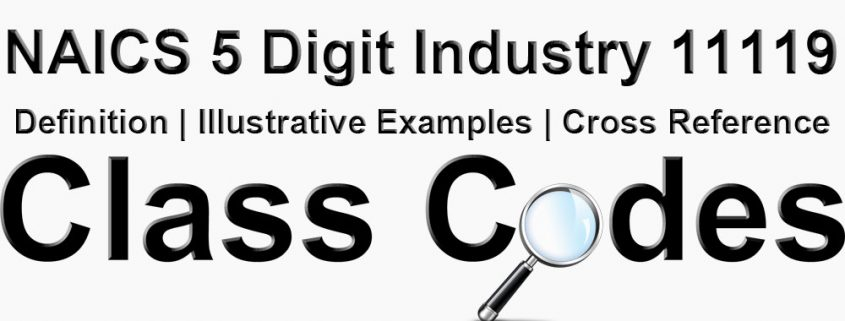 NAICS 5 Digit Industry 11119