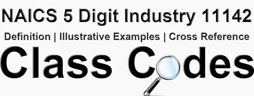 NAICS 5 Digit Industry 11142