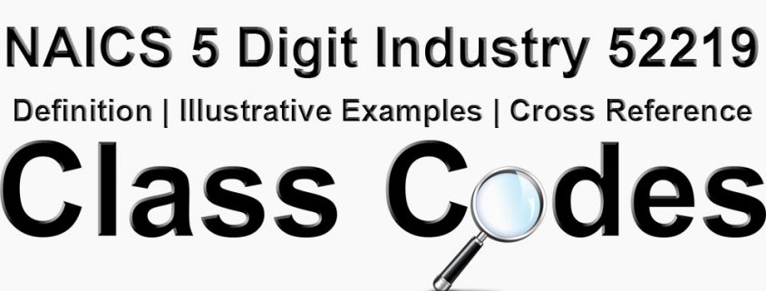 NAICS 5 Digit Industry 52219