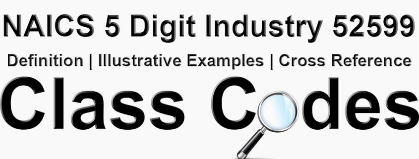 NAICS 5 Digit Industry 52599