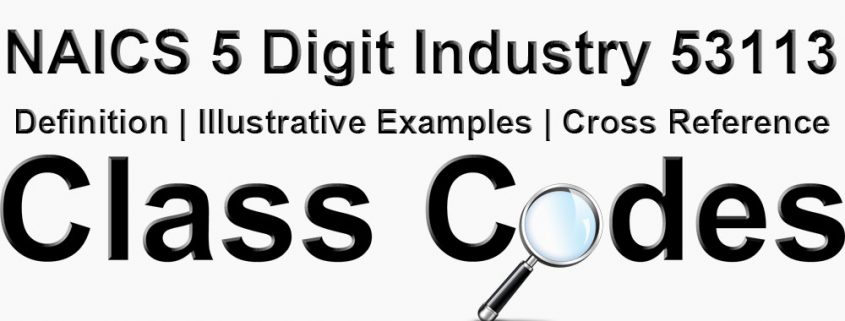 NAICS 5 Digit Industry 53113